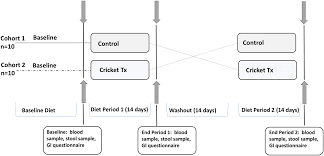 Impact Of Edible Cricket Consumption On Gut Microbiota In
