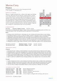 50 Attractive Sample Professional Resume Format   Resume References