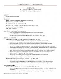 School Counselor Resume Objective Examples Guidance Sample
