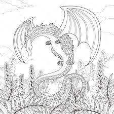 Mysterie Dragon Kleurplaat Stockvector Kchungtw 82669090