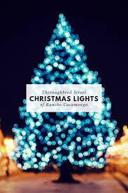Thoroughbred Christmas Lights 2018 Thoroughbred Christmas Lights 2017 Lisa Dinoto Group