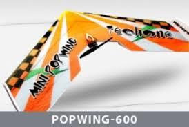 <b>Радиоуправляемая</b> модель <b>самолета Techone Mini</b> Popwing-600 ...