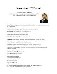 Form Cv International Resume Format For Overseas Job This Sum Keeps Simple