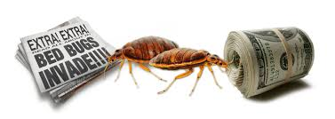 bed bugs don t care who s house they crash rich or poor but how much is a bed bug extermination going to cost