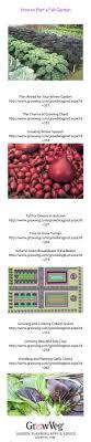 8077 best Small Budget Gardening images on Pinterest | Backyard ...