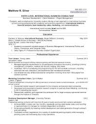 Sample Resume For International Jobs