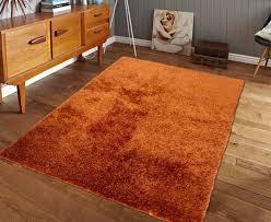 burnt orange rug. Living Room Awesome Area Rug Popular Home Goods Rugs Dalyn In Burnt Orange Intended Regarding Aztec