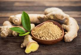consuming ginger during pregnancy