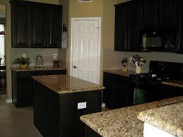 Kitchen Remodeling With Black Appliances kitchen designs with black