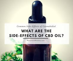 cbd oil how to make
