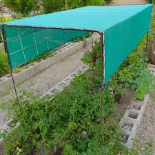large vegetable garden with covers