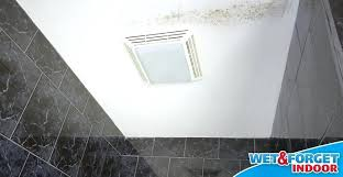 bathroom mold removal products. Bathroom Mold Wet Forget Indoor Stops And Mildew In Its Tracks Removal . How To Remove Products