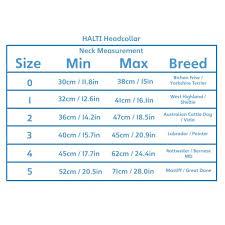 Halti Size Chart Buurtsite Net