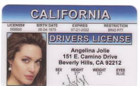 Angelina Drivers Ebay License Id Jolie Novelty Card Collectors