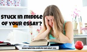 university assignments mba bba projects essay writing help   image 7