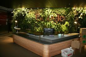 ultimate office google nyc compound. Google Office Plants Ultimate Nyc Compound