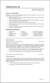 Resume P L Responsibility Resume Regularguyrant Best Resume Site