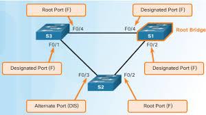 Designated Port Vs Root Port Port Role Decisions For Rstp Ccna Education