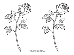 Easy To Draw Roses Free Simple Rose Drawings Download Free Clip Art Free Clip Art On