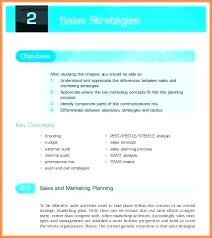 Sales Plan Document Sample Marketing Strategy Template Annbolivia Info