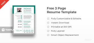 Best Resume Template Free New 40 Best Resume Templates To Download Free Premium Templates