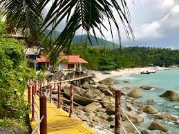 amazing stay at eden bar haad yuan beach asia thailand