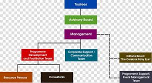 University Hospital Organizational Chart Organizational Learning Transparent Background Png Cliparts