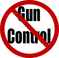 opinion essay on violence and gun control