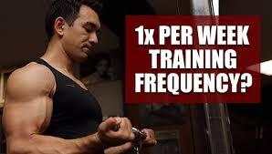 training each muscle once per week