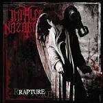 Rapture [Bonus Tracks]