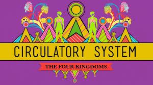 circulatory respiratory systems crashcourse biology