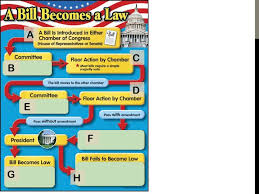 Bill To Law Chart Collins Rob How A Bill Becomes Law Resources