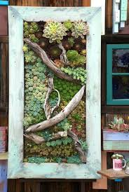 succulent wall art elegant best succulents images on spectacular succulent wall art