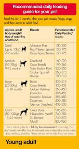 Dog Food Chart By Weight And Age Pedigree Dog Food Young Adult Chicken And Rice 1 2 Kg