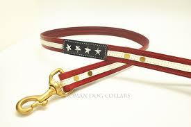 american flag dog leash