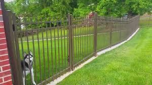 no dig dog fence the fence for dogs that dig outdoor living expert