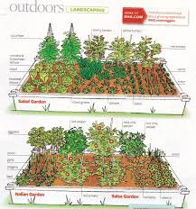 Small Picture Vegetable Garden Layouts Gardening Ideas