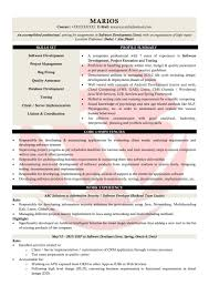 Five Top Risks Of Attending Sample Resume Resume Information