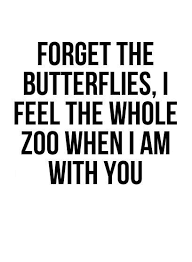 Love Funny Quotes Beauteous Love Quotes Forget The Butterflies I Feel The Whole Zoo When I Am