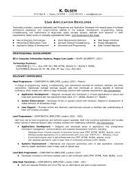 Amazing Cobol Programmer Resume Pictures Simple Resume Office