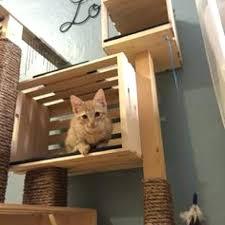 Diy cat playhouse Tower Cat Play House Playhouse Diy Lilac Shop Cat Play House Playground Walmart Tank Playhouse Maker House