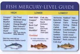 Mercury Levels In Fish Chart Fish Mercury Levels In 2019 Mercury In Fish Healthy Food