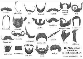 The Alphabetical Facial Hair Identification Chart Print 21