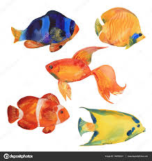 watercolor tropical fish stock photo