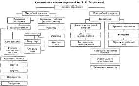 Гигиена питания Рефераты ru Основной причиной их возникновения является употребление в пищу продуктов обладающих вредным действием или в результате развития в них вредных