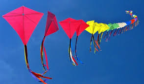 interesting facts you did not know about makar sankranti  makar sankranti