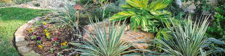 Residential Landscape Design Fort Worth Landscape Services Fort Worth Commercial Landscape Design