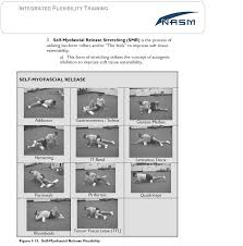 Alexanderfitness Page 3 Nasm Personal Training Study