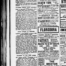 the sun new york n y 1833 1916 june 23 1901 page 10 image 10 chronicling america library of congress