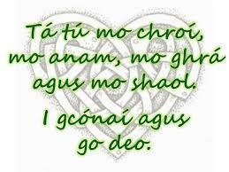 Irish Love Quotes Custom 48 Best Irish Heart Images On Pinterest Irish Pride Irish Quotes